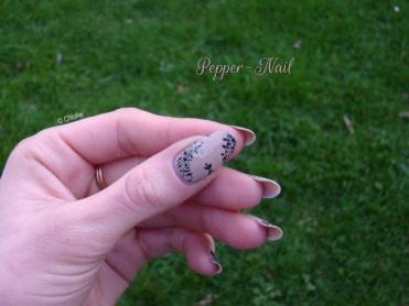 nail_art_14_dentelle_fine_04